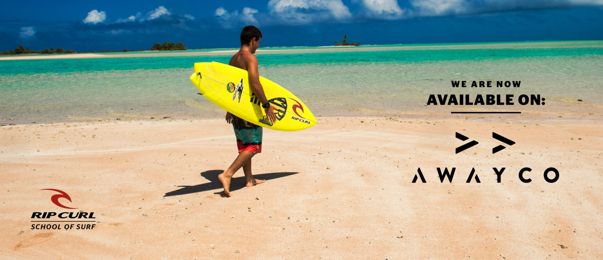 rip curl school of surf rental is now available on awayco
